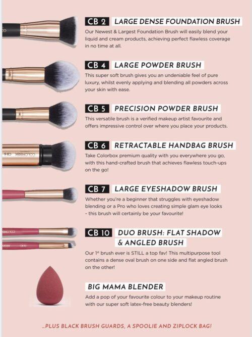 Essential Makeup Brush Set